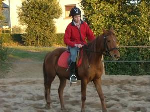 centre equestre valence d'albi