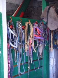 equipement du centre equestre