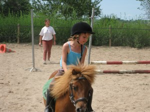 poney club requista